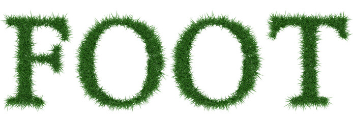Foot - 3D rendering fresh Grass letters isolated on whhite background.