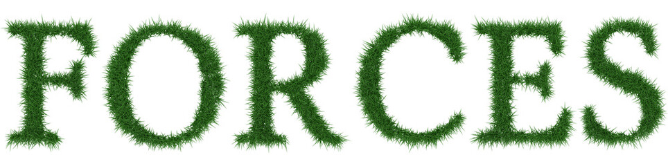 Forces - 3D rendering fresh Grass letters isolated on whhite background.