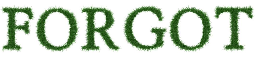 Forgot - 3D rendering fresh Grass letters isolated on whhite background.