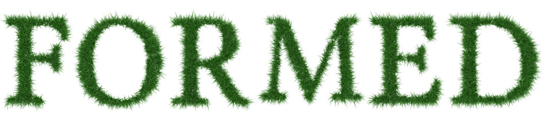 Formed - 3D rendering fresh Grass letters isolated on whhite background.