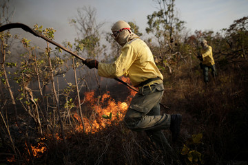 Volunteers are seen working to put out a forest fire in the northern area of Brasilia's National Park, in Brasilia, Brazil,
