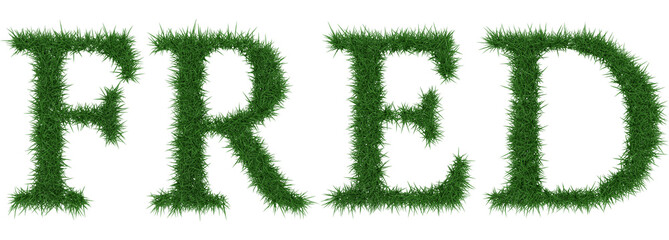 Fred - 3D rendering fresh Grass letters isolated on whhite background.