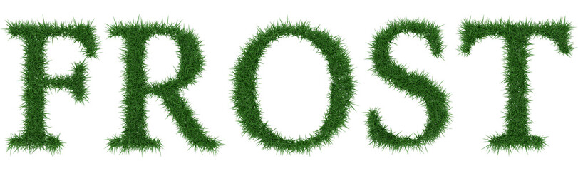 Frost - 3D rendering fresh Grass letters isolated on whhite background.