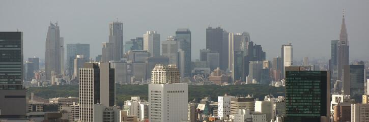 日本の東京都市景観「新宿の高層ビル群などを望む」