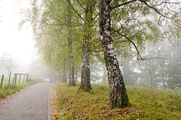 Herbstlandschaft, Ruhe, Stille Depression, Traurigkeit, herbstliche Melancholie :)