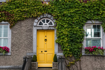 Facade of house braided with ivy and yellow door