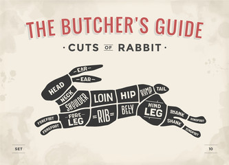 Cut of meat set. Poster Butcher diagram, scheme - Rabbit. Vintage typographic hand-drawn rabbit or hare silhouette for butcher shop, restaurant menu, graphic design. Meat theme. Vector Illustration