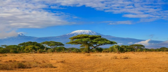 Fond de hotte en verre imprimé Afrique Kilimanjaro mountain Tanzania snow capped under cloudy blue skies captured whist on safari in Africa Kenya.