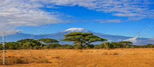 Wall mural Kilimanjaro mountain Tanzania snow capped under cloudy blue skies captured whist on safari in Africa Kenya.