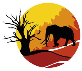 Africa con elefante