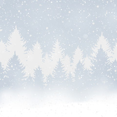 Winter christmas forest