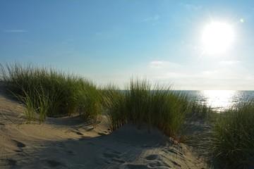 Sand Dünen mit  Strandhafer an der Nordsee mit Sonne am Abend