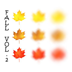 Falling realistic maple leaves set with blured variation, vector illustration