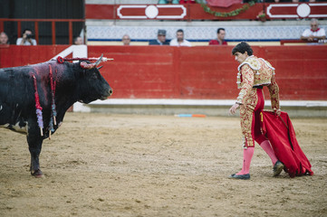 Photo sur Toile Corrida Bullfighter in a bullring.