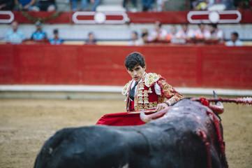 Bullfighter in a bullring.
