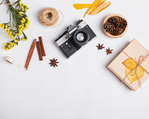 Small autumn related items and vintage camera  on the white background