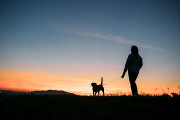 Sunset silhouettes woman and dog on the walk