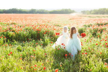 little girl model, childhood, fashion, summer concept - on the sunny field of blooming poppies two little sisters in white and blue wedding dress picking flowers in bouquets