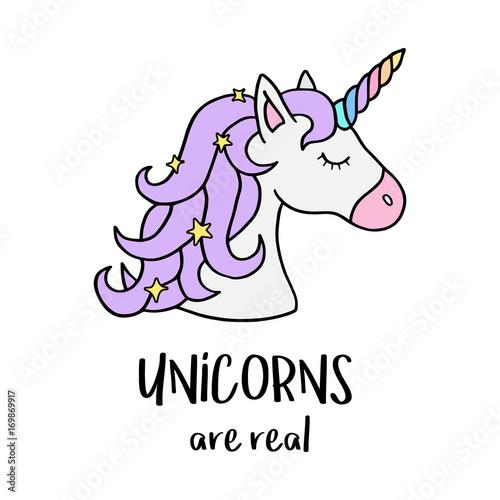 unicorns are real vector illustration drawing cute unicorn graphic
