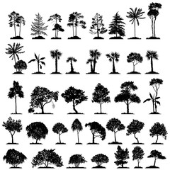 vector set of deciduous trees