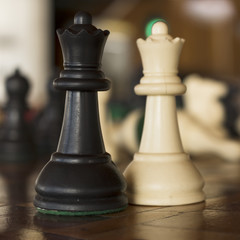 Chess pieces. Couple made of two queens of different colors.