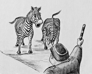 Two zebras and a police officer with striped stick