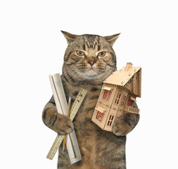 The cat architect is holding a house model. White background.