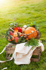 Seasonal vegetables in a basket