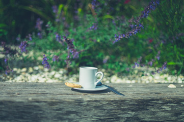 Cup of espresso with biscuit in garden