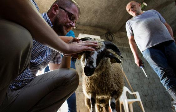 Imam Amer Sukurica whispers dua to Kurban's (sacrificial sheep) ear during Eid al-Adha in Dinosa village, near Podgorica
