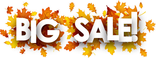 Autumn big sale banner with leaves.