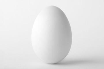 Single white egg isolated on white