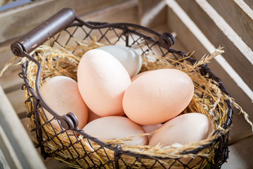 Good and ecological eggs with hen feathers