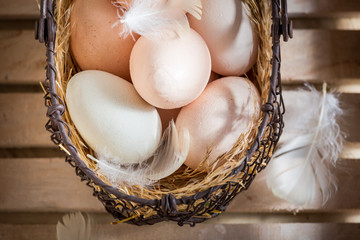 Full of vitamins free range eggs with hen feathers