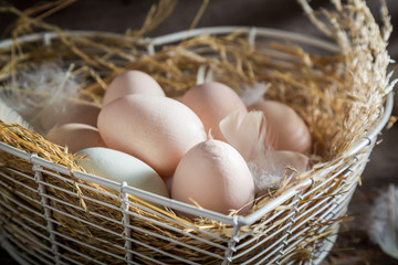 Good and ecological eggs from the henhouse