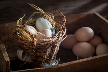 Fresh and ecological eggs in the basket
