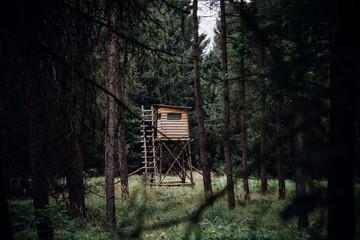 Ein Hochsitz zum Jagen mitten im dunklen Wald