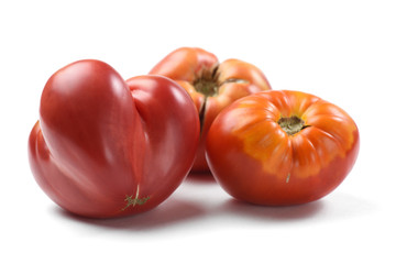 Heirloom fresh juicy tomatoes irregular in shape isolated