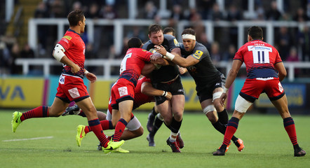 Rugby Union - Premiership - Newcastle Falcons vs Worcester Warriors