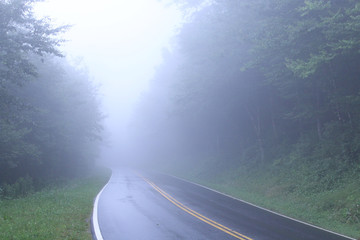 Road in the Tennessee Smokey Mountains with Heavy Fog