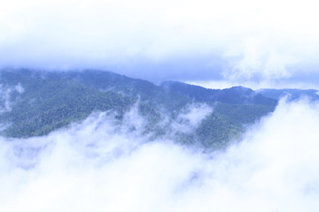 Smokey Mountains Covered with Fog, Mist, Steam, and Heavy Clouds