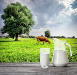 Glass and jug of milk against background of cow and pasture