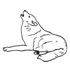 Howling wolf. Black animal contour isolated on white background. Wild wolf character, forest animals, predator. Hand drawn mammal illustration for logo, clip art, tattoo, prints, design, posters.