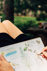 Woman's hands sketching in her nature journal