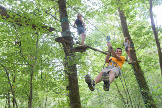 zip line experience in the forest