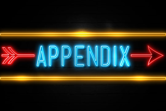 Appendix  - fluorescent Neon Sign on brickwall Front view