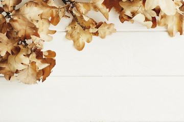 Picture of autumn leaves on wooden background