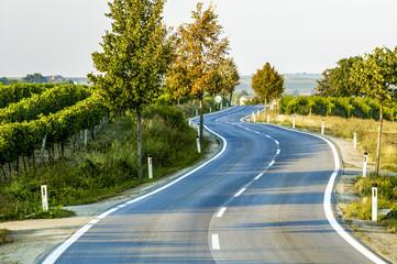Landstrasse mit Kurve, Linienführung, Doppel-S-Kurve, Österrei