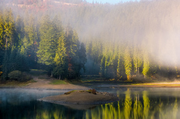 thick morning fog on the lake in spruce forest