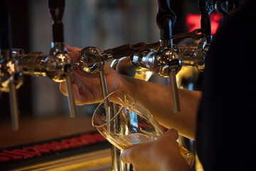 pour  glass of beer from steel tap in bar